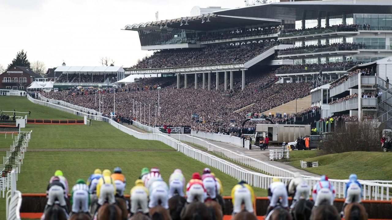 Cheltenham racecourse facilities