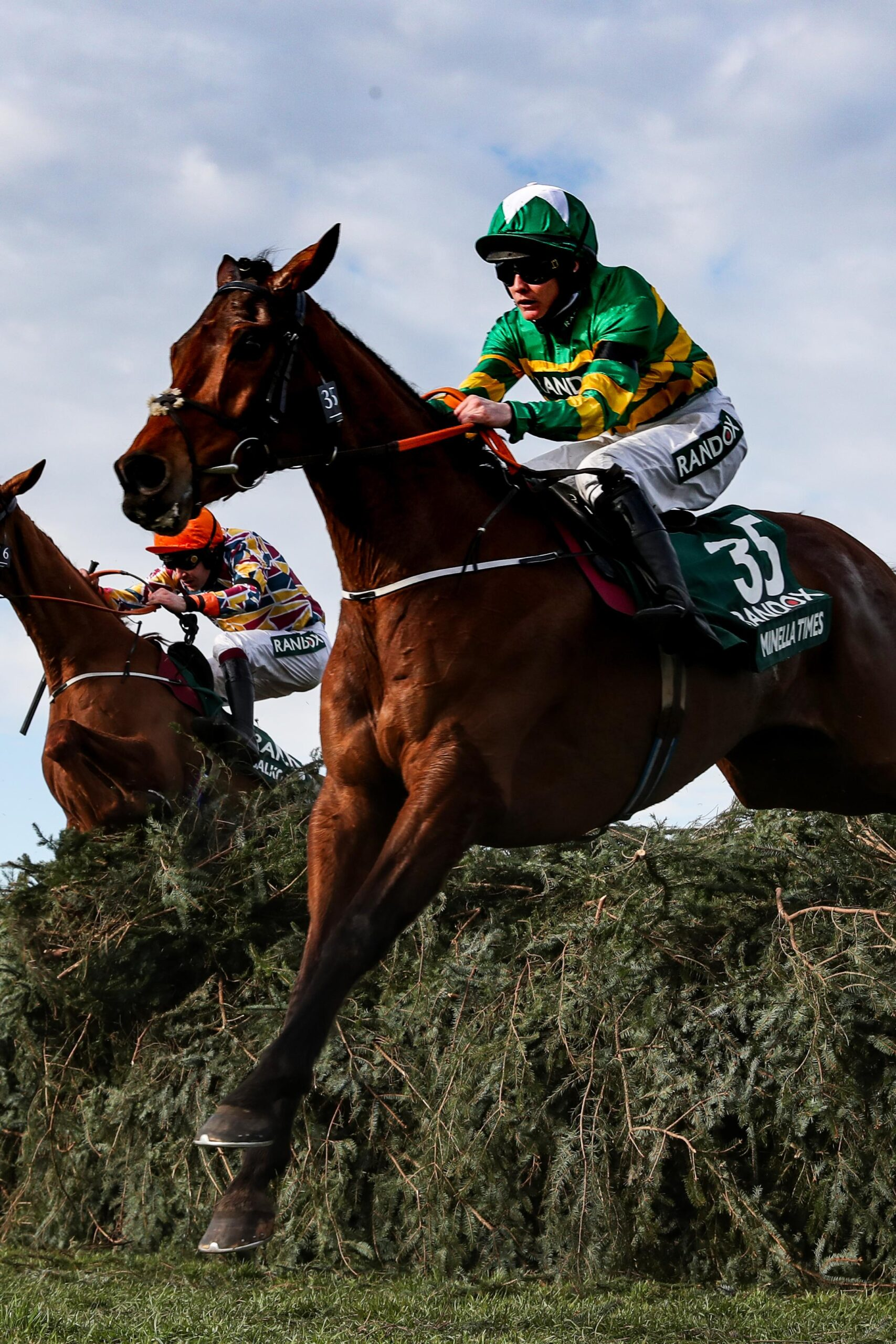 National hunt race types