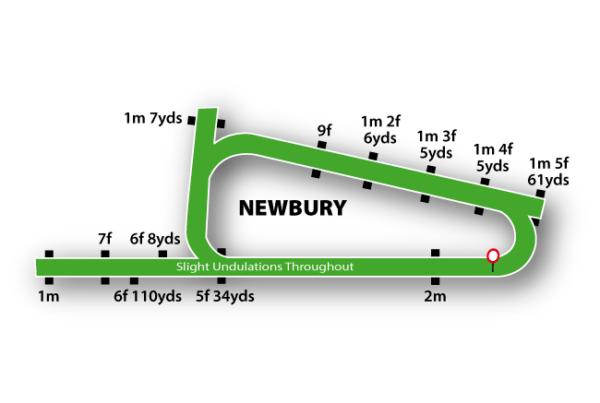 Newbury Racecourse featured