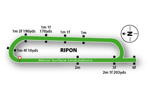 Ripon Racecourse featured
