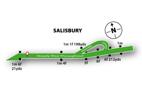 Salisbury Racecourse featured