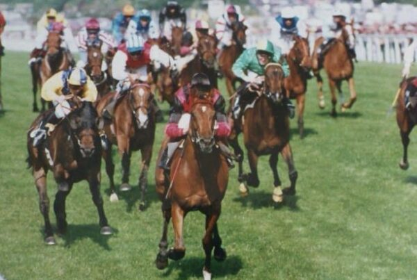 Sweet Glow wins the Ascot Stakes 1994 as planned